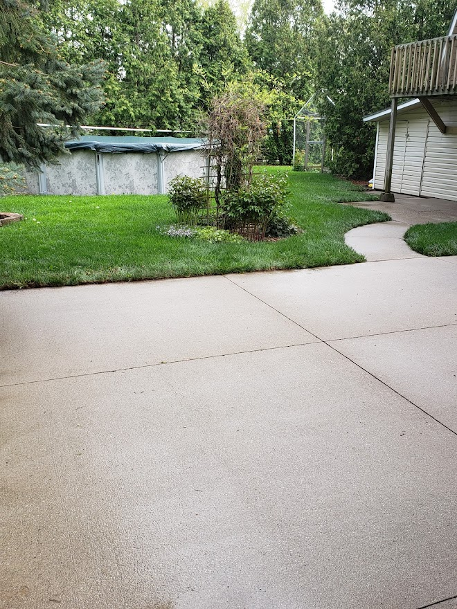 driveway with lawn and trees